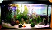 новый панорамный аквариум 112л с крышкой и 2-мя лампами