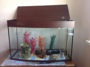 Продам срочно аквариум