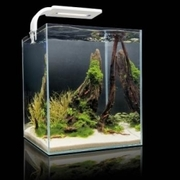 Аквариум для креветок Aquael Shrimp Set 10 SMARTPLANT белый